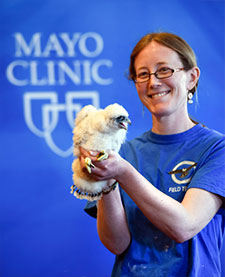 Mayo Clinic Falcon Program